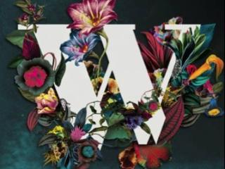 WILDERNESS PROMO 2014
